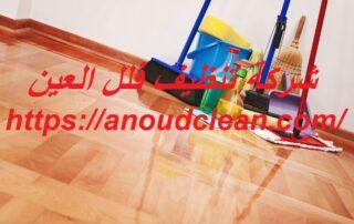 شركة تنظيف فلل العين