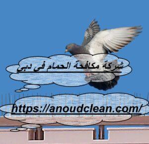 شركة مكافحة الحمام في دبي
