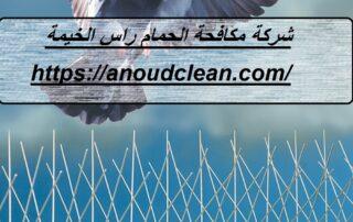 شركة مكافحة الحمام في راس الخيمة