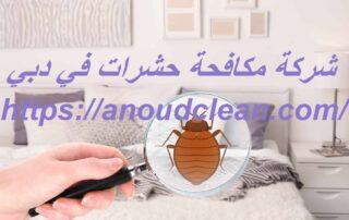 شركة مكافحة حشرات في دبي
